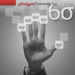 DMAIC Methodology Training Course